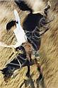 Bronco Rider, California, 1957, Ernst Haas, Click for value