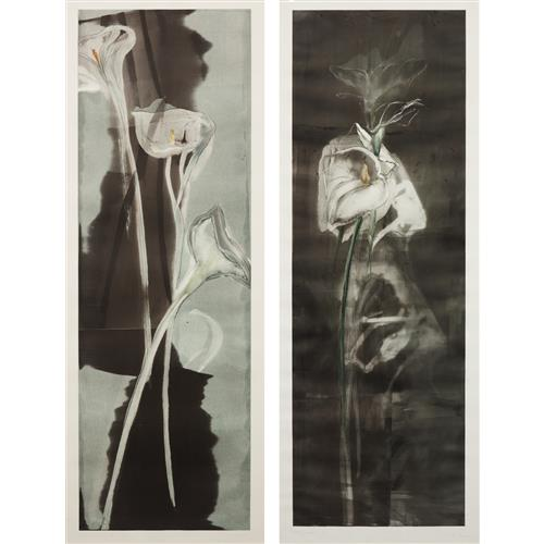 MICHAEL MAZUR - Tall Calla II; and Tall Calla II, 1985