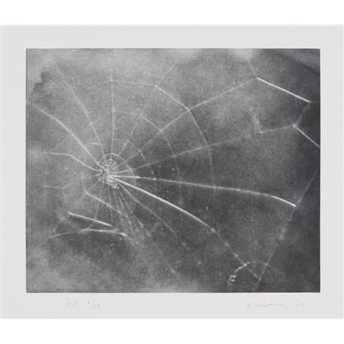 VIJA CELMINS - Untitled (Web #5), 2009
