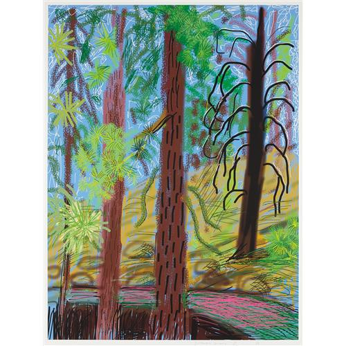 DAVID HOCKNEY - Untitled No. 6 from the Yosemite Suite, 2010