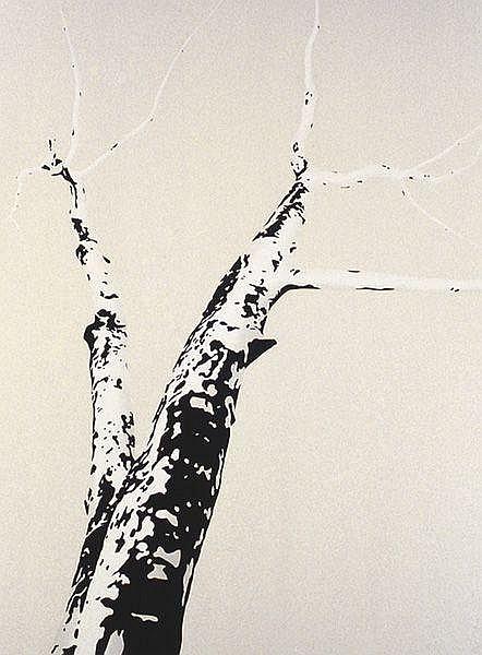 Untitled (095), 2000
