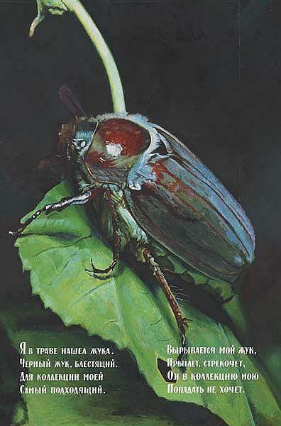 Beetle, 1982