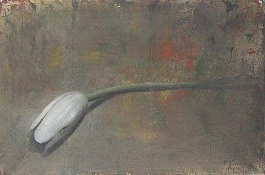 Tulipe, 2007