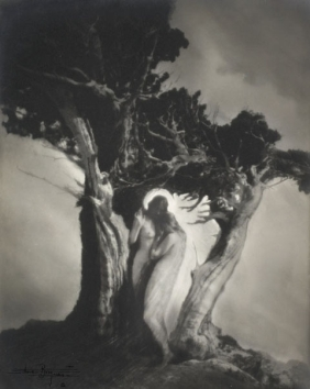 ANNE BRIGMAN (American, 1869-1950) THE HEA...