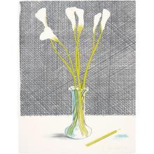 DAVID HOCKNEY - Lillies, from Europäische Graphik No VII, 1971
