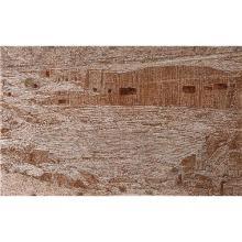 GAL WEINSTEIN - Petra