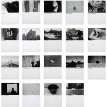 DAVID SHRIGLEY - Untitled, 2005