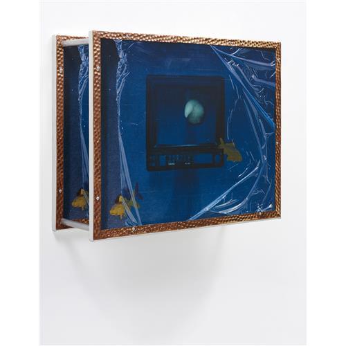 SIMON DENNY - Multimedia Aquarium 4: Stupor, 2009