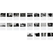 DAVID SHRIGLEY - Untitled (Group of 20 photographs)