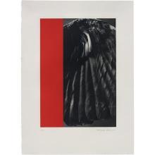 BALTHASAR BURKHARD - Crow-Wing and Monochrome