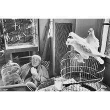 HENRI CARTIER-BRESSON - Henri Matisse, Vence, France, 1944