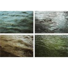 RONI HORN - From Some Thames (Group O), 1999-2000