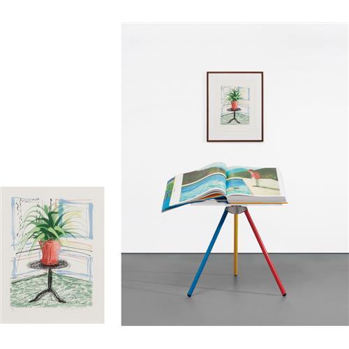 DAVID HOCKNEY - A Bigger Book, Art Edition C, 2010/2016