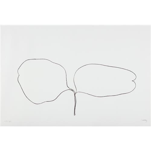 ELLSWORTH KELLY - Locust (Acacia), from Suite of Plant Lithographs, 1965-66