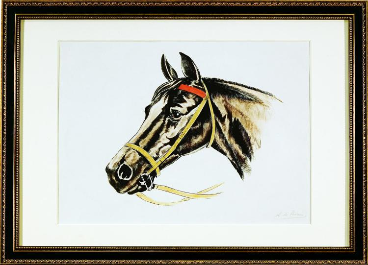 Beautiful Framed Horse Portrait