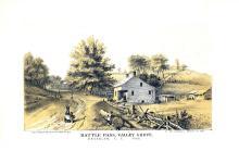 Rustic Brooklyn in 1866