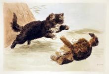 Kittens Being Kittens