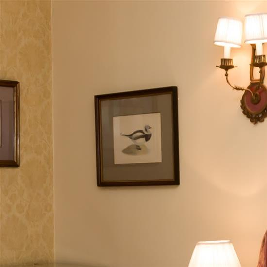 Deux estampes, Oiseaux, 46x56 cmPareja de grabados de patos