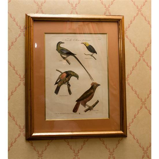 Deux estampes2 estampas pájaros