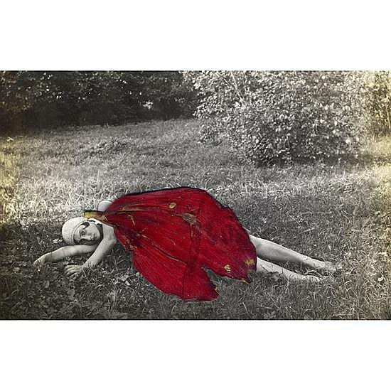 Julia BORISSOVA (née en 1968) Running to the edge (red petal), Saint-Petersbourg, 2012
