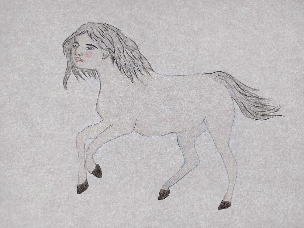 Alfassi Sharon Autoportrait en centaure