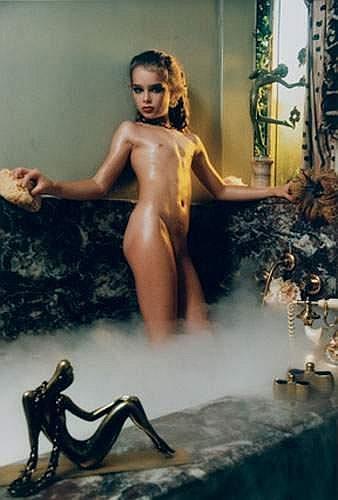GARY GROSS - Brooke Shields : the woman in the