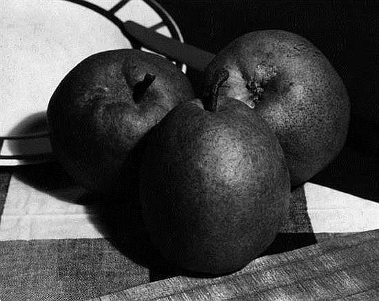 François KOLLAR (1904-1979) Nature morte aux poires, vers 1930 Épreuve gélatino-argentique d'époque