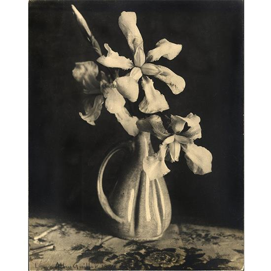 Laure Albin Guillot (1879-1962)Orchidées, 1938
