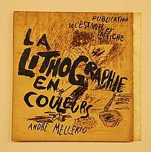 Pierre BONNARD MELLERIO (ANDRÉ)