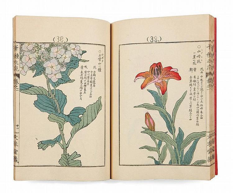 Bairei Kôno (1844-1895) Chikusa no hana Une grande variété de fleurs 4 volumes complets dans un étui en tissu bleu. Couvertures ve...