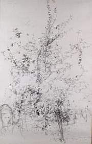 Yves COMMERE-1920-1986 LE JARDIN, 1970. Dessin à