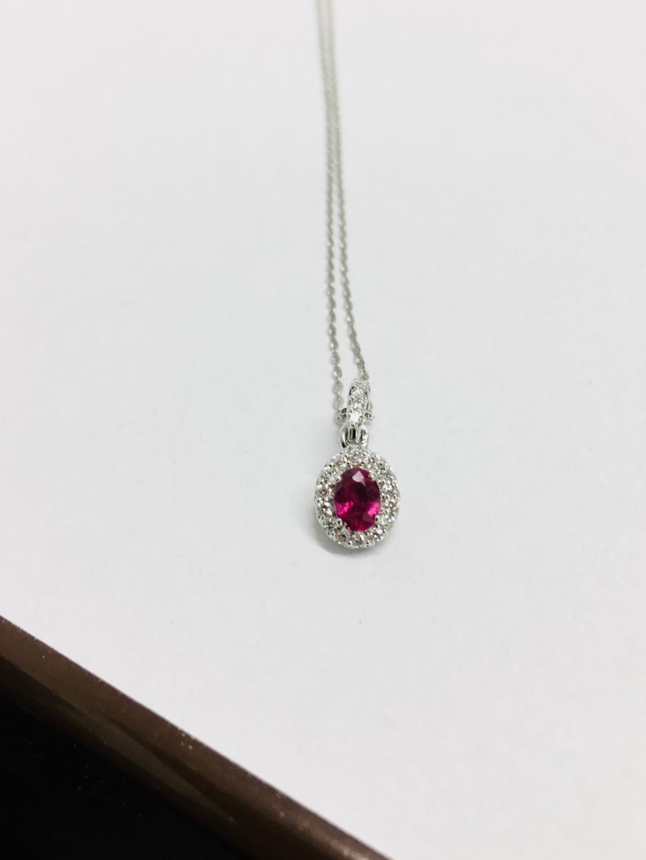 e60c8e7a3738 18ct white gold Ruby   diamond pendant and 18ct white gold necklace
