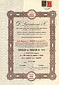 6% D. Lazzaroni & C. S.p.A.
