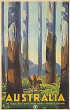 Australia / Tallest Trees. ca. 1936