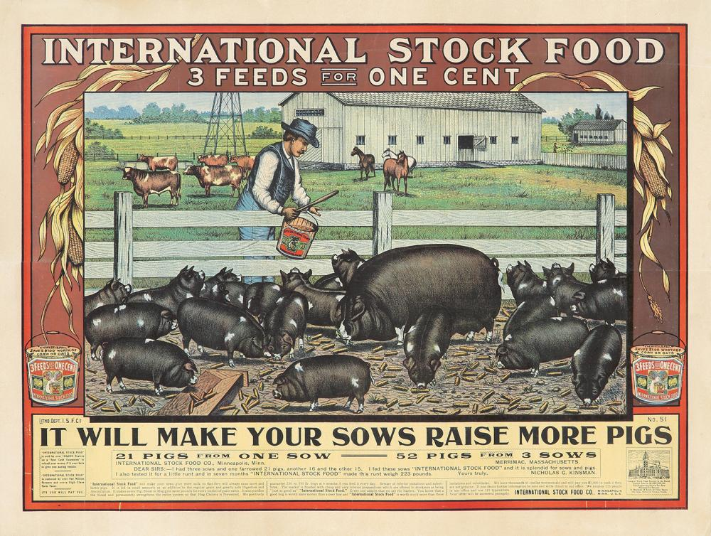 International Stock Food.
