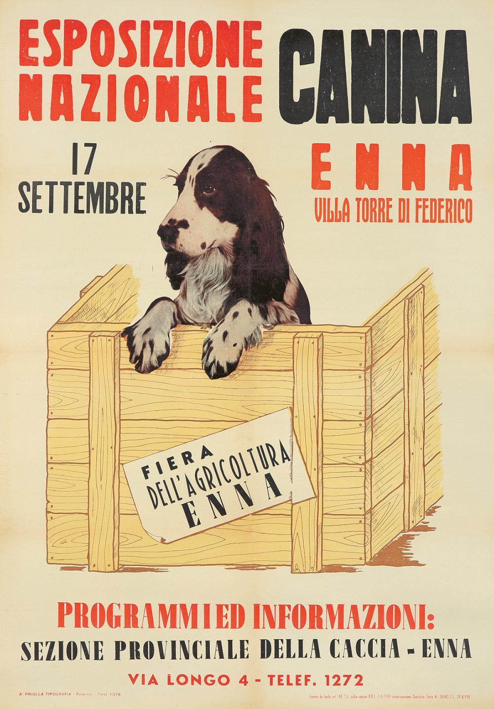 Esposizione Canina. ca. 1950.