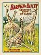 Barnum & Bailey / Rare Zoological Features. 1909