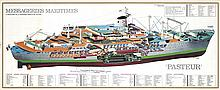 Two Ship Cutaways: