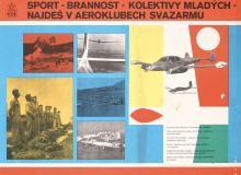 Original Vintage 1950s Czech Sports Defense Aviation Poster