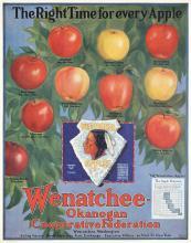 Original 1920s American Apple Poster Wenatchee Indian