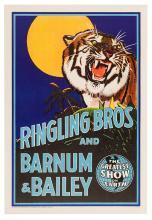 Ringling Bros. and Barnum & Bailey. Tiger.