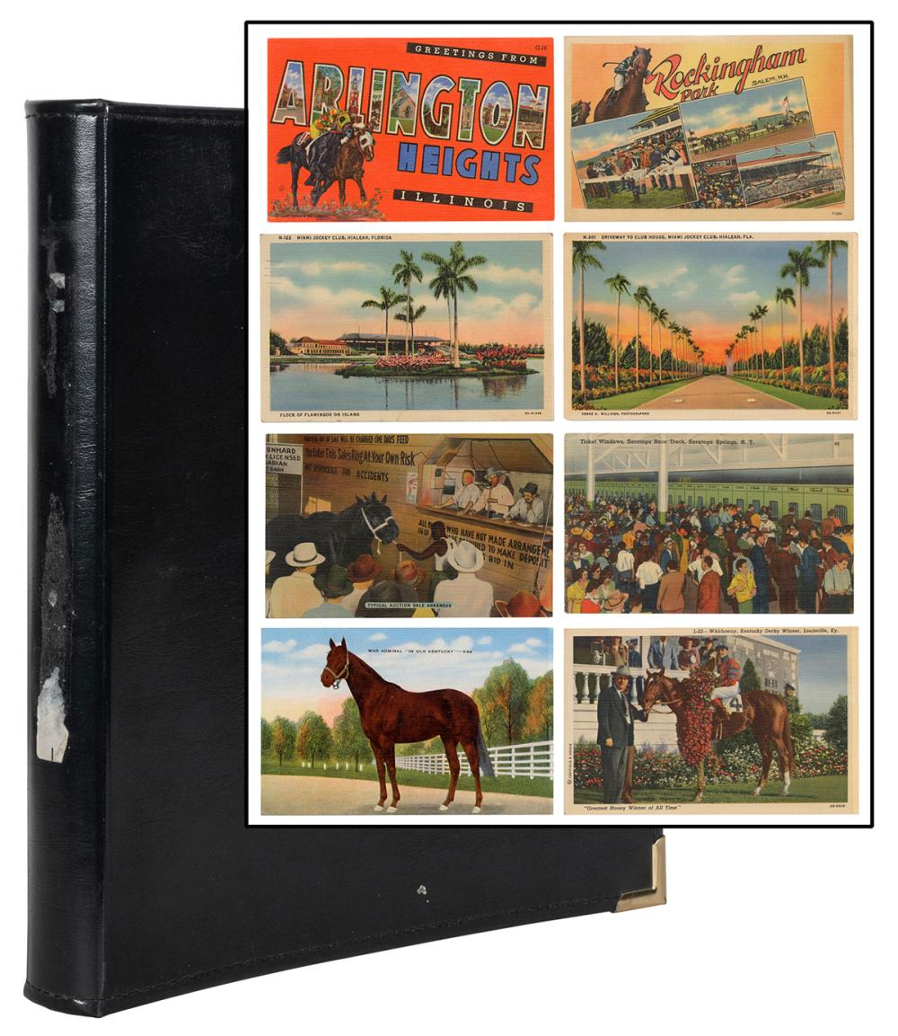 [HORSES]. COLLECTION RACETRACKS AND HORSE RACING ON POSTCAR...
