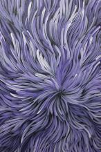 Patricia Kamara Bush Medicine Acrylic On Canvas 82cm x 68cm