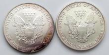 Lot 45: 2001 & 2005 AMERICAN SILVER EAGLES