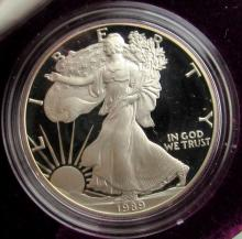 Lot 216: 1989 & 2002 PROOF AMERICAN SILVER EAGLE