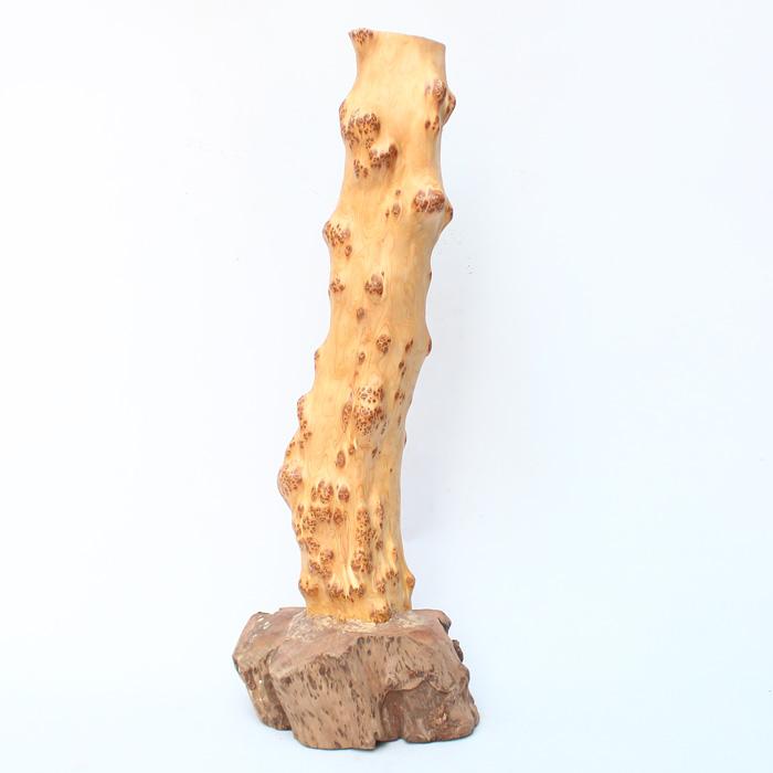 16 kg Chinese Thuja Sutchuenensis Wood Original Wood Statue
