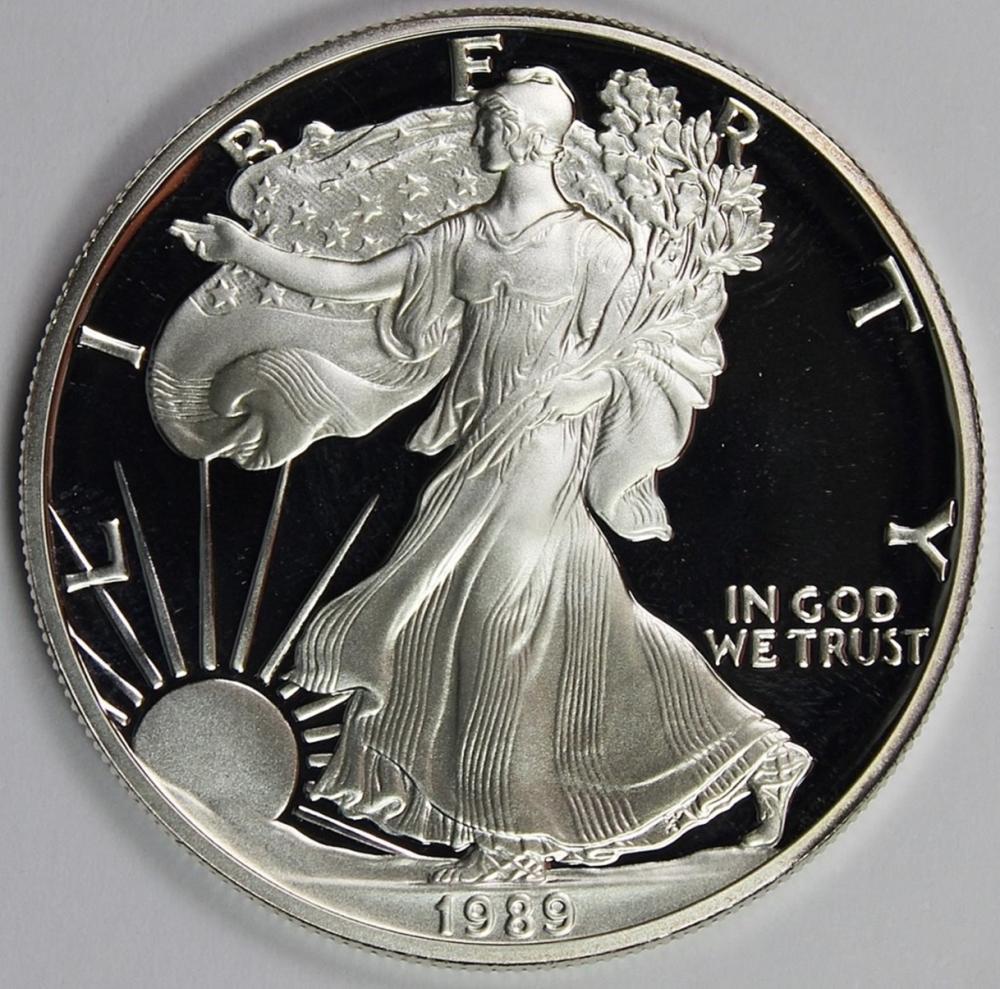 Lot 315: 1989 AMERICAN SILVER EAGLE