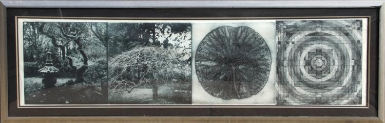 Judy Pfaff, When the Moon is Full, Photoetching