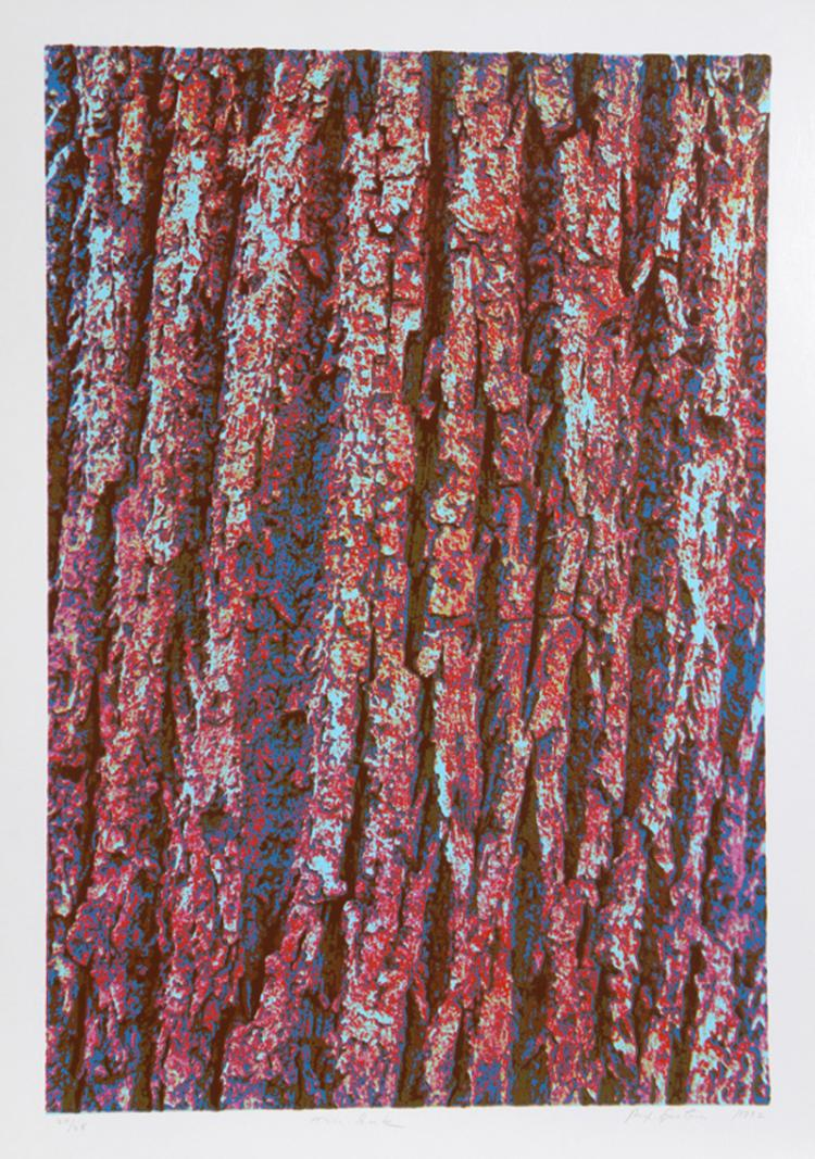 Max Epstein, Tree Bark, Serigraph