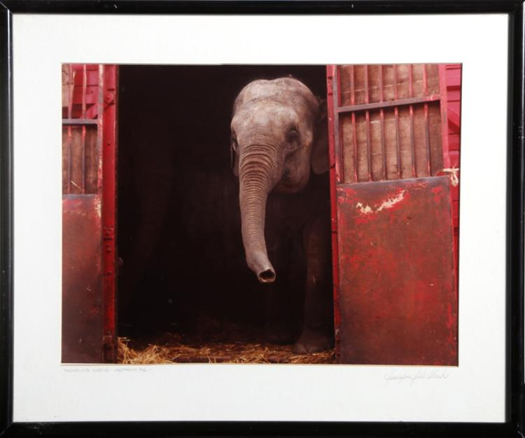 Jennifer Jill Ward, Traveling Circus, Brittany France, Color Photograph